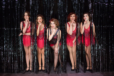 Cabaret glitter curtain photo