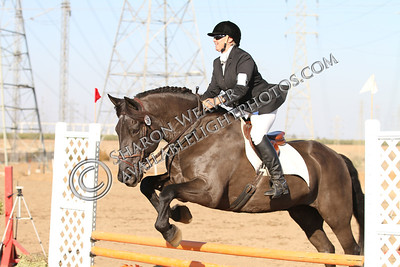 ElMirador_111713_2524