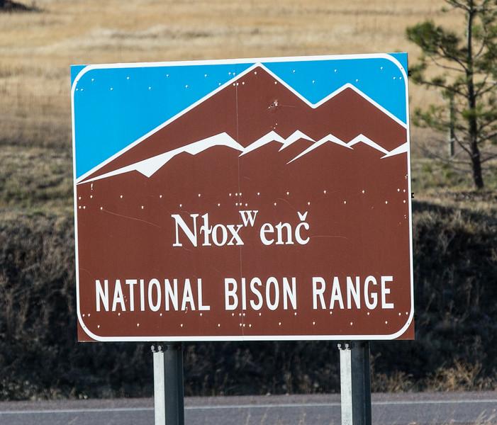 Salish name for the bison range