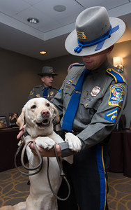 "111716  Wesley Bunnell | Staff  On Thursday the CT State Police commemorated the 30th anniversary of the country's and possibly the worlds first operational accelerant detection canine (ADC), ""Mattie"" who became field operational on Sept 1, 1986. . Currently four ADC's are assigned to the Fire & Explosion Investigation Unit. From the program's inception 93 accelerant detection canines have been trained by the CT State Police from other states and countries.  Det. Wayne Opdenbrouw with ADC ""Sprite""."