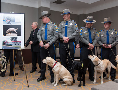 "111716  Wesley Bunnell | Staff  On Thursday the CT State Police commemorated the 30th anniversary of the country's and possibly the worlds first operational accelerant detection canine (ADC), ""Mattie"" who became field operational on Sept 1, 1986. . Currently four ADC's are assigned to the Fire & Explosion Investigation Unit. From the program's inception 93 accelerant detection canines have been trained by the CT State Police from other states and countries.  Unveiling a 30th anniversary commemorative  statue are, from left, Det. Joh Sawyer with ADC ""Sophie"", Det. Paul Macuk with ADC ""Cora"", Det. Wayne Opdenbrouw with ADC ""Sprite"" & Det. Joe Lombardi with ADC ""Clauss""."