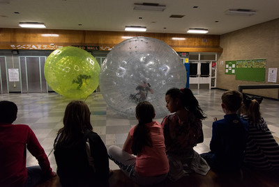 112116  Wesley Bunnell | Staff  Edgewood Elementary School held a hamster themed day which included a human hamster ball for the staff and students to enter.  Fourth grade students from Ms. Schulitz's class wait their turns as fellow classmates roll around inside the hamster balls.
