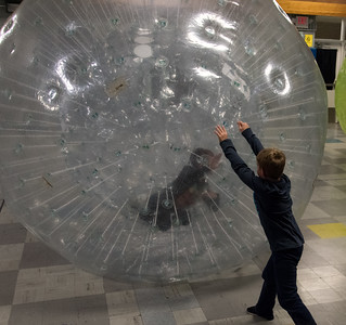 112116  Wesley Bunnell | Staff  Edgewood Elementary School held a hamster themed day which included a human hamster ball for the staff and students to enter. Classmates from Ms. Schulitz's fourth grade class prepare to swap places inside the hamster ball.