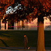 100716  Wesley Bunnell   Staff<br /> <br /> Walkers wind through the warm late afternoon autumn sun at Walnut Hill Park on Monday.