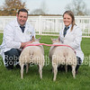Overall Supreme Champion R Garth from Bentham with a pair of trimmed wethers