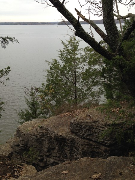 Day 3<br /> Sunday 11/12<br /> <br /> Nashville. We walked 5 miles along the Volunteer Trail by Percy Priest Lake. Cloudy day but the trees were yellow and pretty.