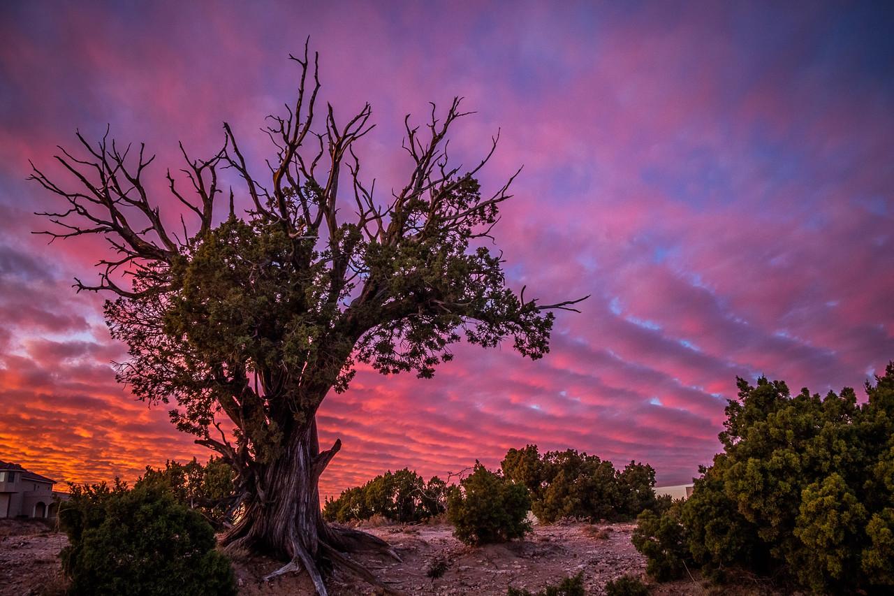 Sunset Near Palo Duro Canyon
