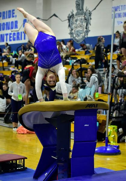 5A State Gymnastics