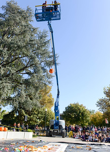 A pumpkins hurtles to the ground during the annual pumpkin drop at Chico State on Thursday, October 31, 2019, in Chico, Califronia. (Matt Bates -- Enterprise-Record)