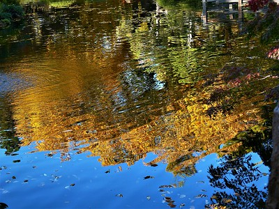 fall color reflected in water