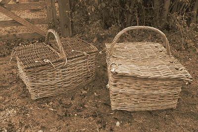 Duck for Dinner basket sepia by Jeff Arthur