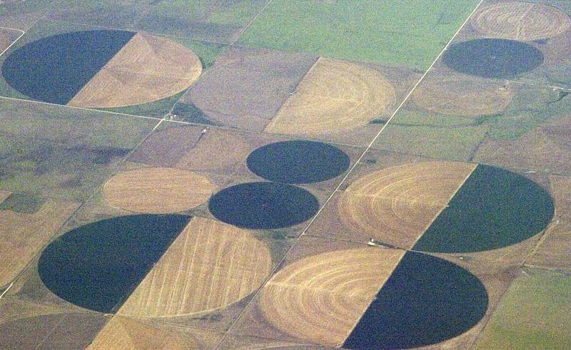 Crop Circles 4