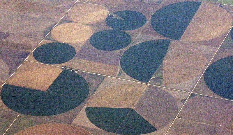Crop Circles 5