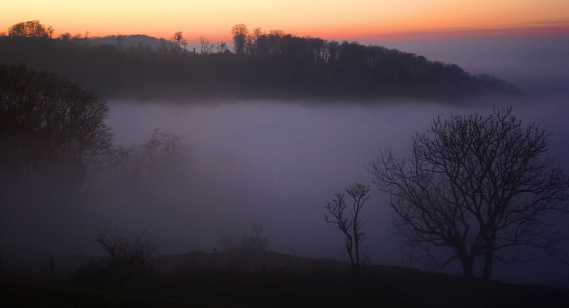 evening misty sunset selsley common mist by Jeff Arthur