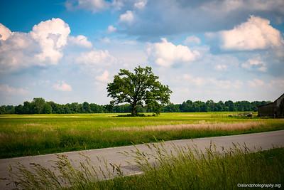 Island Photography_265