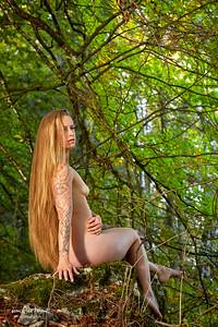 La fée de la forêt