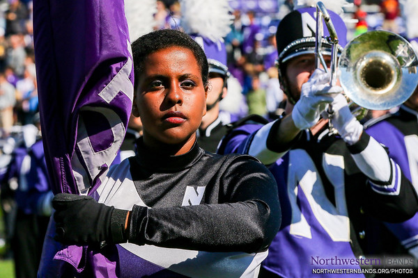 Guarding the Purple Banner