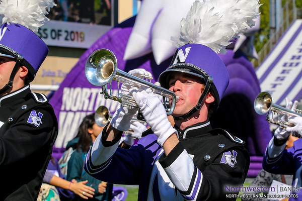 Fanfare For New Wildcats