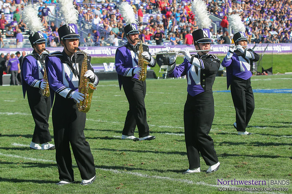 Wildcat Woodwinds