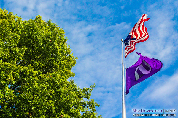 Red, White, Blue, and Purple