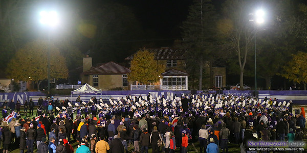 Wildcat Alley Under the Lights