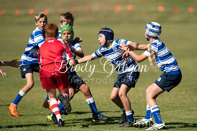Rd4Rugby-2