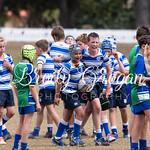 Round 7 Rugby-6