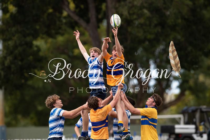 Round 7 Rugby-53