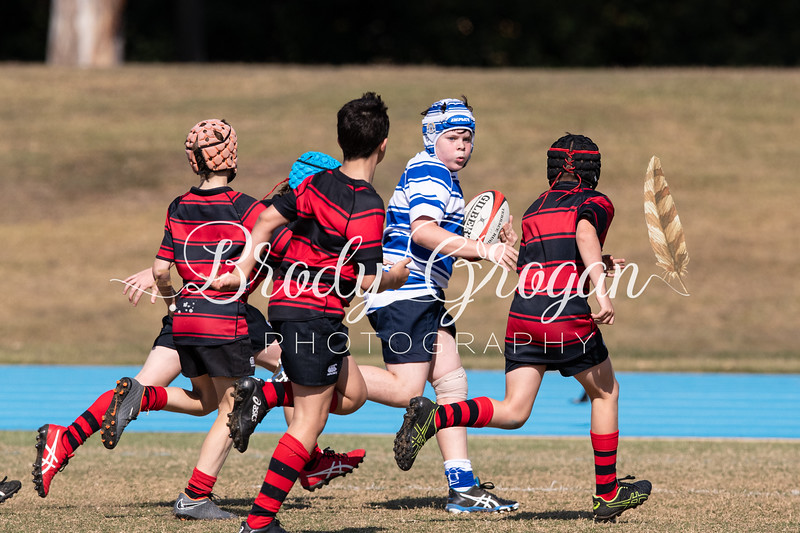Round 8 Rugby vs BGS-1