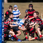 Round 8 Rugby vs BGS-3