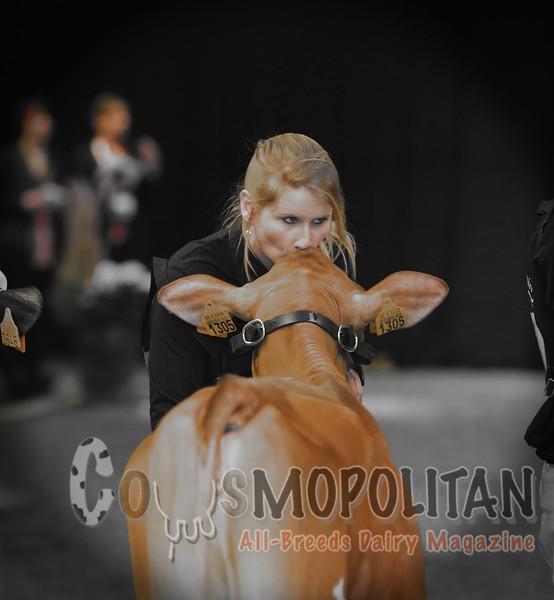 Nuit de La Holstein 2016