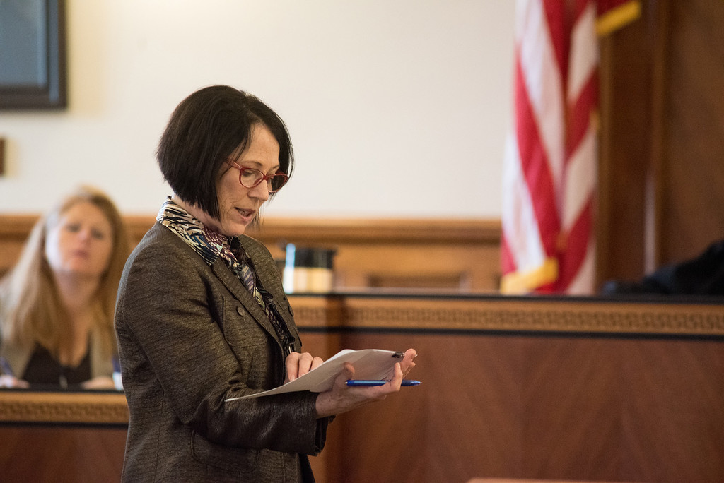 . Maryellen Albanese, a special prosecutor from the Orange County District Attorney\'s Office reads evidence to the jury during the Gilberto Nunez murder trial murder trial at the Ulster County Courthouse in the City of Kingston, NY on Friday, May 27th, 2016. KELLY MARSH/For the Times Herald-Record