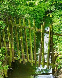 A strange little fence over a strange little creek.
