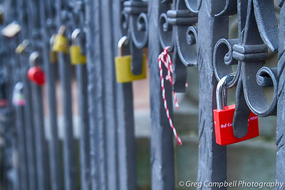 A bunch of very cool locks on a fence. People's names or messages are carved into them. The messages are in German, and they could be threats, I'm not sure. I believe most of the German language was developed to be threatening to foreigners...