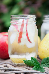 0001_NutritionTwins-apple-pear-infusedwater-spearmint-applecidervinegar-detox-spawater