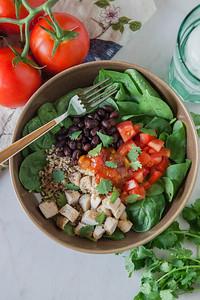 0006_NutritionTwins-chicken-quinoa-taco-salad