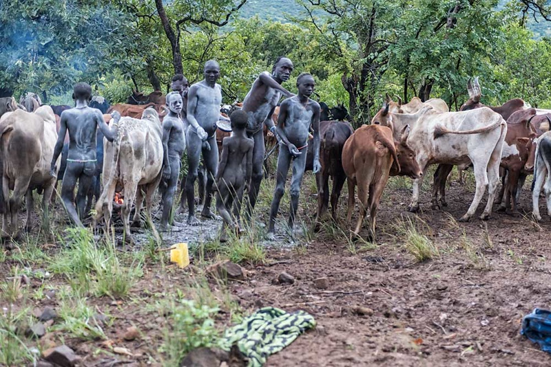 Bome Family and Their Cattle