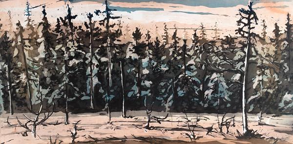 Skogen og myra, 2019, 2800,-