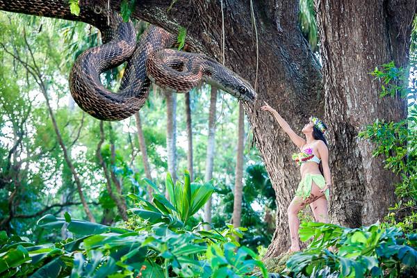 Nymphs of Hawaii