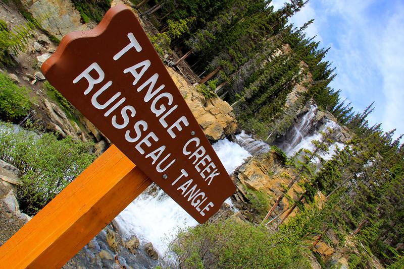 Tangle Creek - Jasper National Park - Alberta Canada