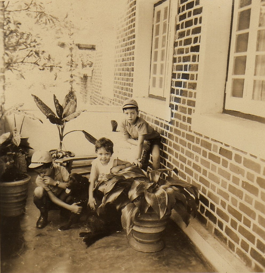 Álvaro Figueiredo, cao Tim-Tim, Palmira, Chico 66--Andrada- Casa K19 na Varanda