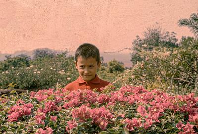 1966- Cossa