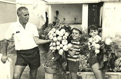 Lucapa, Julho de 1970  Saldanha e filhos na apanha do nabo