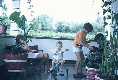 Fucauma - Familia Marques