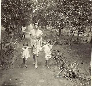 Maria Emilia Encarnação com Olinda e Ju Encarnação na granja do Mussoleige