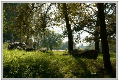 Ráno u řeky Lužnice