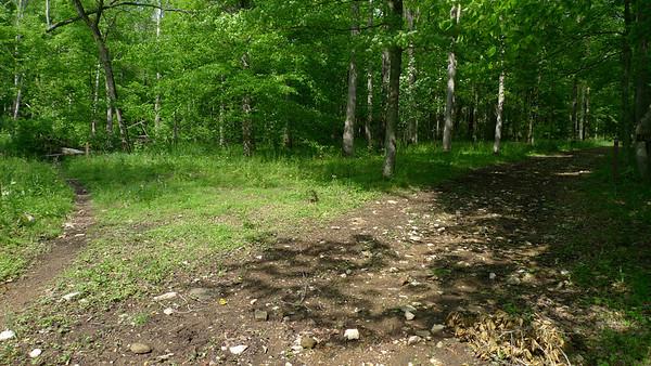 OBWSP Idlewild horse trail