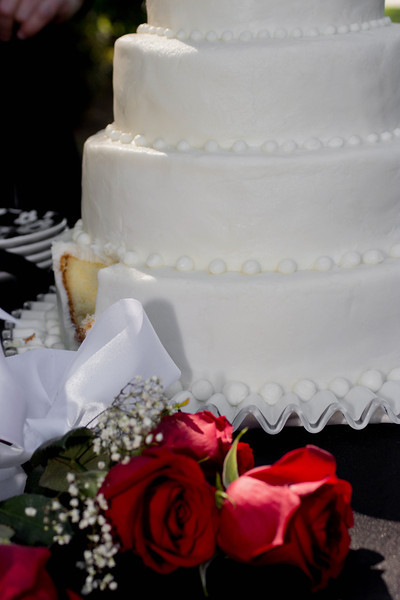 Cake (14 of 18)