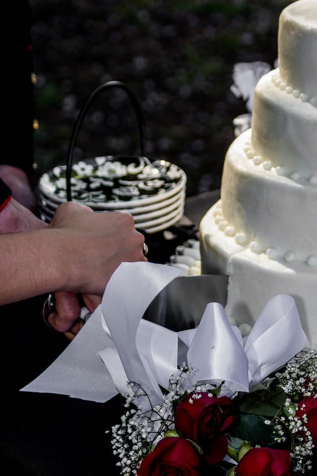 Cake (23 of 11)