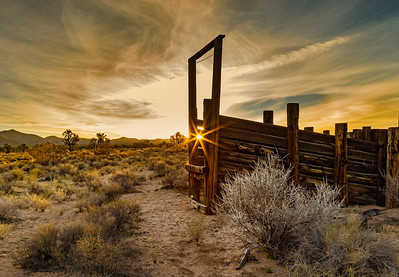 Sunrise at Cima Corrals - John Livingston